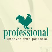 Professional HR Agency