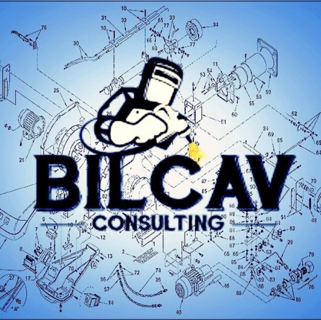 Sc Bilcav Consulting Srl